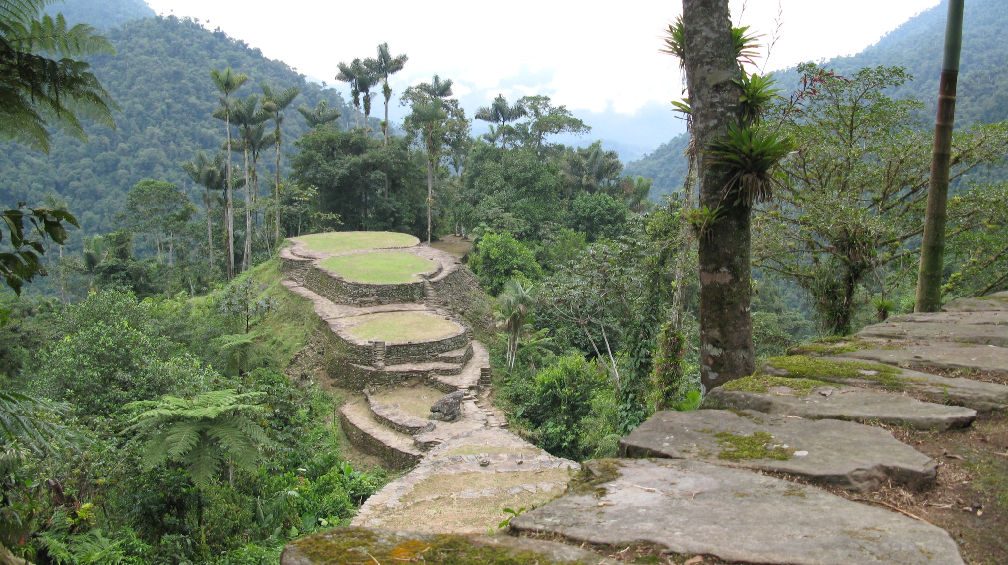 This is an image of the ruins from the Ciudad Perdida in Colombia.