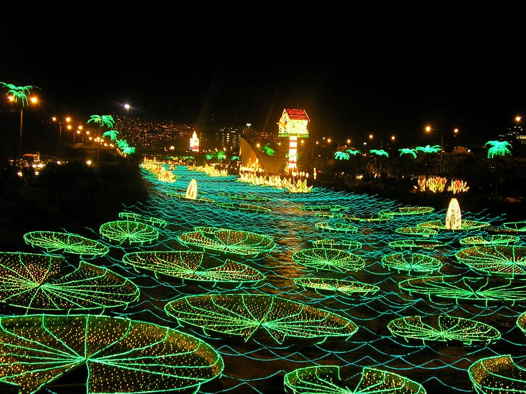 This image shows the christmas lights in Colombia that Medellin decorates its city with.